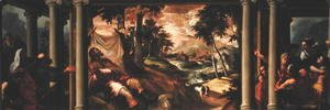 Jacopo Tintoretto (Robusti) - St. Roch Ill in the Desert, c.1560