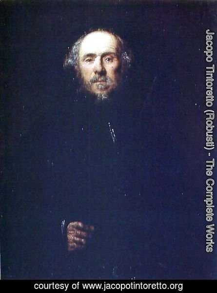 Jacopo Tintoretto (Robusti) - Portrait of a Man 2