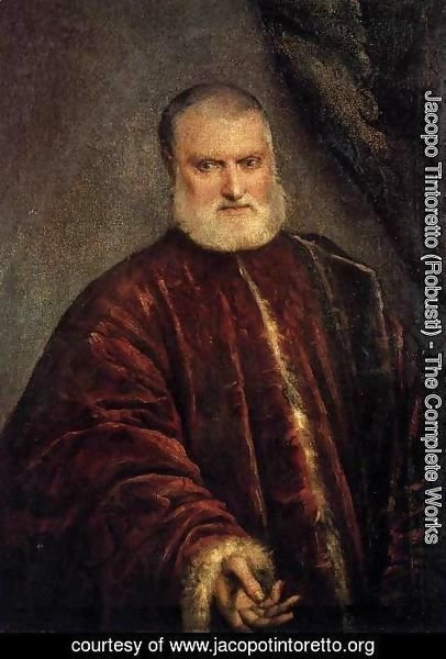 Jacopo Tintoretto (Robusti) - Portrait of Procurator Antonio Cappello 2