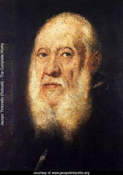 Portrait of Jacopo Sansovino 3