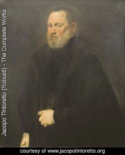 Jacopo Tintoretto (Robusti) - Portrait of a man 4
