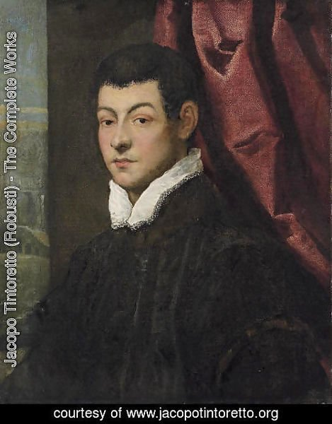 Jacopo Tintoretto (Robusti) - Portrait of a gentleman 3