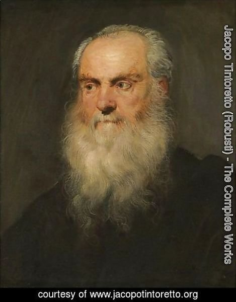 Jacopo Tintoretto (Robusti) - Portrait Of A An Elderly Bearded Man, Head And Shoulders